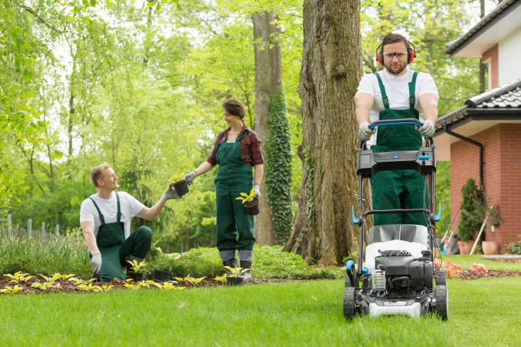 Hire Service - Garden work
